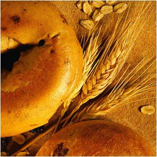 Wheat, Oats and Bagel - Lughnasadh - Elune Blue (Featured Image)