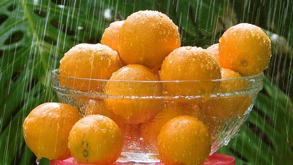 Oranges in Rain - Orange Magical Properties - Elune Blue