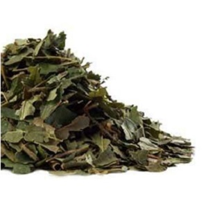 Witch Hazel Leaves (Bulk) from Raven Moonlight