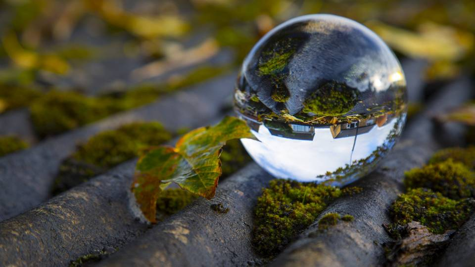 Crystal Ball on Moss - What is Witchcraft - Elune Blue