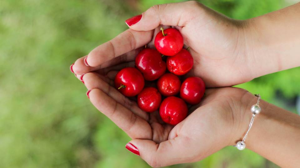 The enchantment and wonder of the cherry tree has influenced the Japanese, to the point that it has even furnished a simple, Japanese love spell – the practice of tying a single strand of hair to a blossoming cherry tree to attract love.  -- Cherry Magical Properties