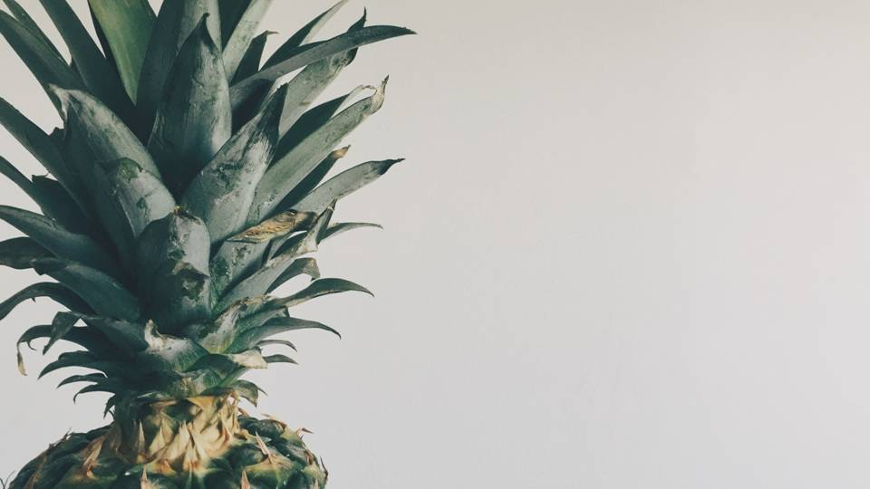 Don't throw away the crown!  Pineapple leaves can be used magically as they ward against jealousy, greed and envy.  They can draw prosperity, growth and abundance to the home. -- Pineapple Leaves Uses