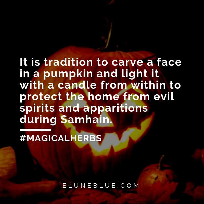 It is tradition to carve a face in a pumpkin and light it with a candle from within to protect the home from evil spirits and apparitions during Samhain. -- Pumpkin Magical Properties and Uses